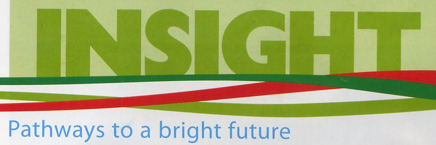 Institute Insight magazine logo