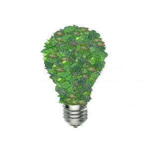 green-bulb-1440675